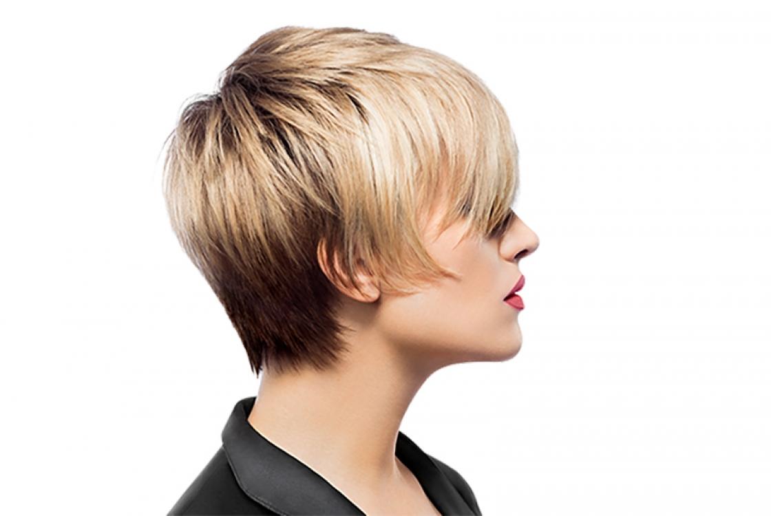 Na een Pivot Point cursus haarkleuren heeft kleurenleer geen geheimen meer voor jou!
